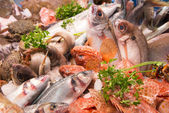 Fish Market Spain — Stock Photo