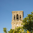 Royalty-Free Stock Photo: Spanish oranges and Bell Tower