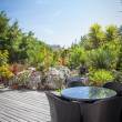 Tropical Modern Garden — Stock Photo