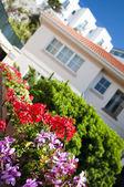 Moderní zahrada — Stock fotografie