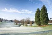 Winter Golf Course — Stock Photo