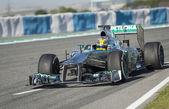 Lewis Hamilton - Merecedes F1 Driver — Stock Photo