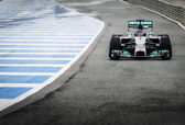 Nico Rosberg  — Stock Photo