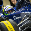 Felipe Massa — Stock Photo #41647861