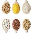 Stock Photo: Beans rice and food ingredients