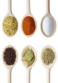 Herbal spice condiment food — Stock Photo