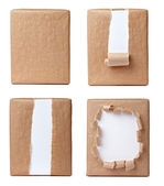 Ripped wrapping box package — Stock Photo