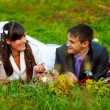 Stock Photo: Bride and groom at picnic in autumn are couple on green grass
