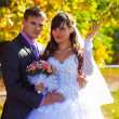 Bride and groom newlyweds standing next to a tree in autumn with — Stock Photo #14552167