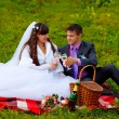 Bride and groom at wedding in green field sitting on picnic, dri — Stock Photo #14552169