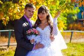 Bruid en bruidegom pasgetrouwden permanent naast een boom in de herfst — Stockfoto