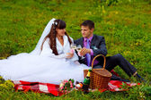 Bride and groom at wedding in green field sitting on picnic, dri — Stock Photo