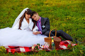 Bride and groom wedding in green field sitting on picnic, drink — Stock Photo