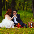 Stock Photo: Redhead bride and groom, wedding in green box, sitting on picn