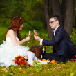 Stock Photo: Redhead bride and groom at wedding in green field sitting on pic