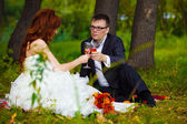 Bride redhead and groom at wedding in green field sitting on pic — Stock Photo