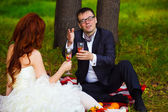 Bride redhead and groom wedding in green field sitting on picnic — Stock Photo