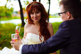 Redhead bride and groom, wedding in green box, sitting on a picn — Stock Photo