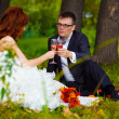 In Russia couple bride and groom sitting on green grass, a picni - Lizenzfreies Foto