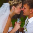 Stock Photo: Bride and groom at wedding couple holding glass of touching and