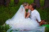 Bride and groom at wedding in green forest sitting on picnic, dr — Stock Photo