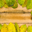 Texture autumn Period of yellow leaves and wood — Stock Photo