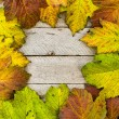 Stock Photo: Autumn Period texture of yellow leaves and wood
