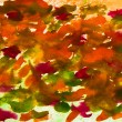 Smears abstract watercolor background orange red green — Stock Photo