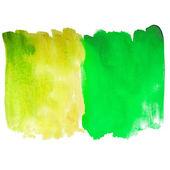 Green macro spot blotch texture isolated white background — Stock Photo