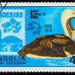 MONGOLIA - CIRCA 1978: A Stamp printed by Mongolia, bird wild du — Stock Photo