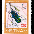 Stock Photo: VIETNAM - CIRC1981: stamp printed in VIETNAM, shows mottled bl