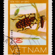 VIETNAM - CIRCA 1981: stamp printed in VIETNAM, shows mottled re — Stock Photo