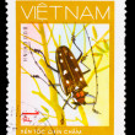VIETNAM - CIRCA 1981: A stamp printed in VIETNAM, shows animal i — Stock Photo