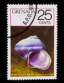 1978 年頃 - グレナダ: グレナダ、紫海 sna 印刷スタンプ — ストック写真