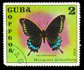 Cuba - circa 1972: een stempel gedrukt in cuba, toont vlinder maar nu met — Stockfoto