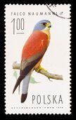 POLAND - CIRCA 1974: A stamp printed in Poland, shows small bird — Foto Stock