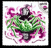 USSR - CIRCA 1975: A Stamp printed in USSR, Kamchatka king crab, — Stock Photo