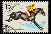 USSR - CIRCA 1982: A stamp printed in USSR, polo equestrian ,ath — Photo