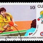 Постер, плакат: CUBA CIRCA 1991: A post stamp printed CUBA 1991 Pan American