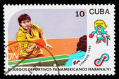 CUBA - CIRCA 1991: A post stamp printed CUBA, 1991 Pan American — Stock Photo