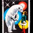 GERMANY - CIRCA 1978: A stamp printed in GERMANY, polar bear and — Stock Photo