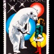 GERMANY - CIRCA 1978: A stamp printed in GERMANY, polar bear and — Stock Photo #15914529