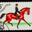 USSR - CIRCA 1982: A stamp printed in USSR, horseback riding, Uk — Stock Photo