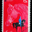 USSR - CIRC1968: stamp printed in USSR, horseback riding, eq — Stock Photo #15922737