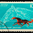 USSR - CIRC1968: stamp printed in USSR, horseback riding, eq — Stock Photo #15925583