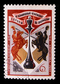 USSR - CIRCA 1977: A stamp printed in USSR, devoted Team champio — ストック写真