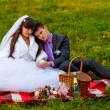 Stock Photo: Bride and groom wedding in green field sitting on picnic, drink