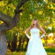 Bride on wedding day is in a forest in autumn, near the lone tre — Stock Photo
