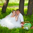 Couple at wedding newlyweds picnic in forest glade, brid — Stock Photo #16207427