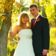 Couple bride and groom stand in autumn forest near tree at sunse - Foto Stock